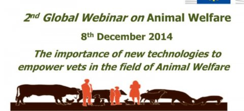 2° Webinar Global en Bienestar Animal