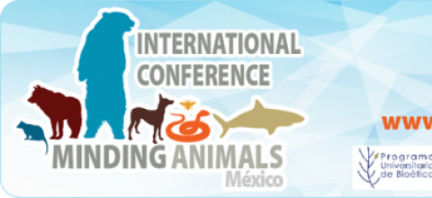 4° Congreso Internacional Minding Animals