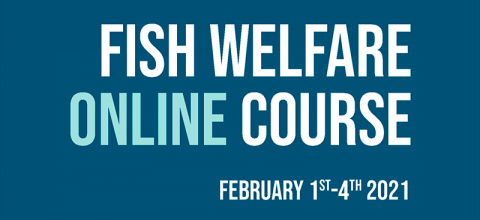 Fish welfare online course