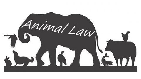 Animal Law - Summer Course